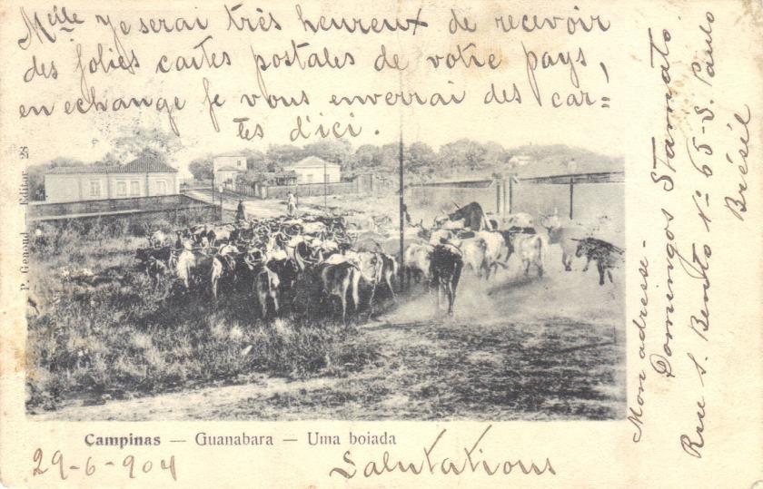 Genoud 1904q